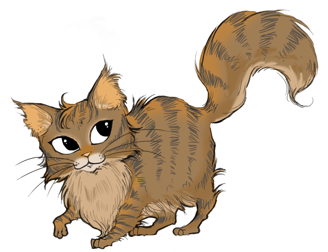 mainecoon_01_small